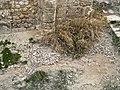 Mosaic Floor at Kom el Dikka (III).jpg