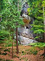 Národní přírodní památka Kozákov (27).jpg