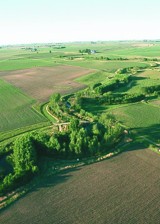 Nature-based solutions - Multiple rows of trees and shrubs, as well as a native grass strip, combine in a riparian buffer to protect Bear Creek in Story County, Iowa, United States.