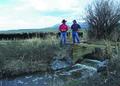 NRCSMT01092 - Montana (5031)(NRCS Photo Gallery).tif