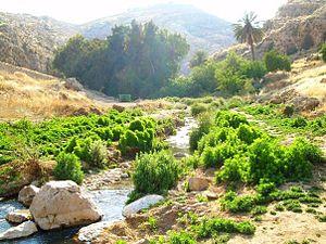 Wadi Qelt - Nahal Prat stream