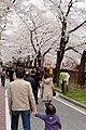Nakameguro 2009-04-05 (3448464165).jpg