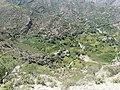 Nakhlah - نخلة - panoramio (1).jpg