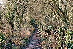 Nature Trail - Wilstone Rervoir (32321630721).jpg