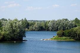 Naturschutzgebiet Leineaue zwischen Ruthe und Koldingen - An den Seen (3).jpg