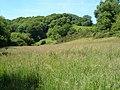 Near Alleron Bridge - geograph.org.uk - 187808.jpg