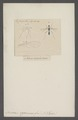 Nerius - Print - Iconographia Zoologica - Special Collections University of Amsterdam - UBAINV0274 039 07 0035.tif