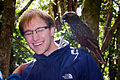 Nestor meridionalis -New Zealand -perching on left shoulder-8a.jpg