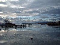 Neusiedler See im Winter.jpg