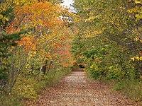 New England Autumn (3983332436).jpg