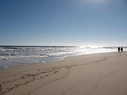 De langstrakte sandstrande langs landtungen Cape Cod lokker hver sæson en mængde sommerhusejer og andre ferierende til Massachusetts.
