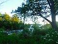 Niagara Falls State Park (35003822412).jpg