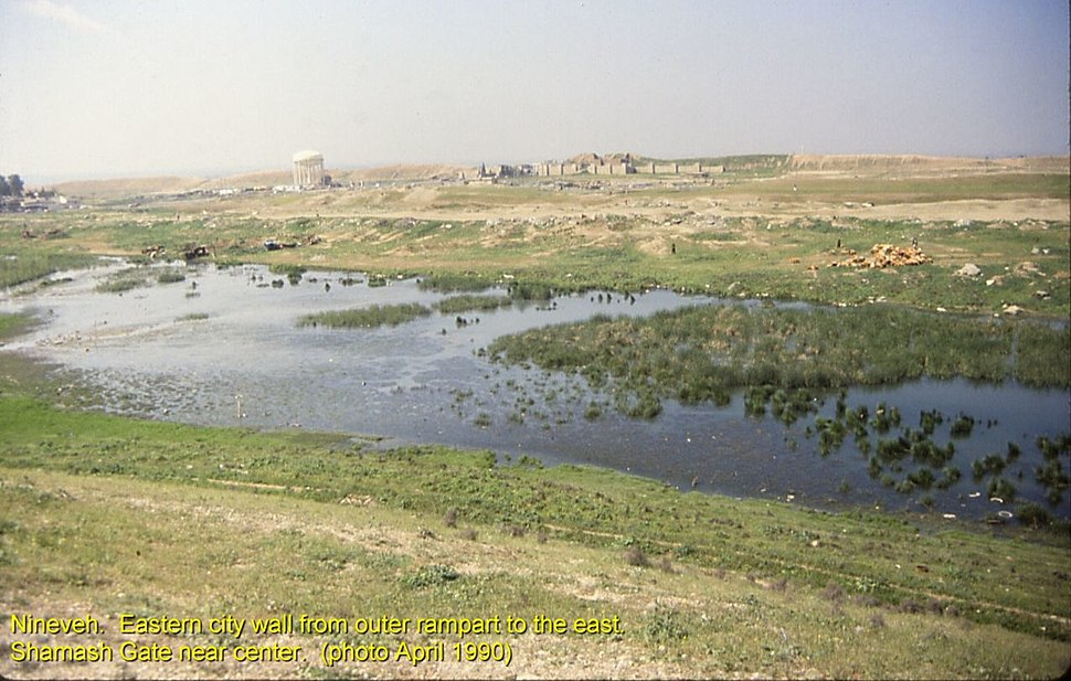 Nineveh walls east Shamash Gate from rampart