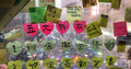 Notes for Hong Kong.png