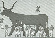 Богиня Нут в образе коровы. Изображение из книги Уоллиса Баджа «Боги Египта», том 1, ок. 1904 г.