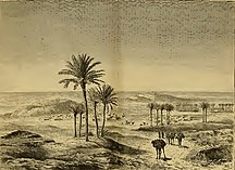 Provincia de Tinduf