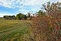 Odolenovice pastviny nad vesnicí (2).jpg