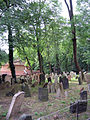 Old Jewish Cemetery, Prague 011.jpg