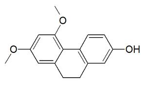 Orchinol - Image: Orchinol