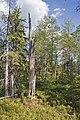 Ore 77-1, Halgonberget - KMB - 16001000260604.jpg