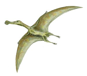 Ornithocheirus - Artist's impression of O. simus