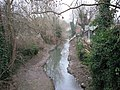 Osney Ditch - geograph.org.uk - 1102475.jpg