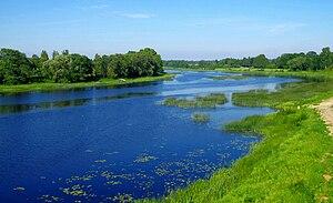 Pärnu (river) - Image: Pärnu jõgi Toris