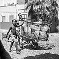 Pêche traditionnelle et intergénérationnelle à Palmeira, île de Sal, Cap-Vert.jpg