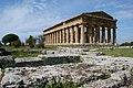 PAESTUM, Griekse tempel (5473152501).jpg