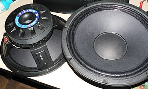 Woofer - Two P-Audio Woofers. Note the cast frame, vented pole piece and reinforced paper cone.