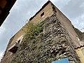 Palazzo Baronale Colonna 2020 1.jpg