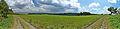 Panoramatický pohled směrem na východ z polí nad obcí, Lhota u Konice, Brodek u Konice, okres Prostějov.jpg