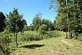Parc de la Noisette à Antony et Verrières-le-Buisson le 22 août 2017 - 42.jpg