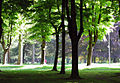 Parco di Monza - panoramio.jpg