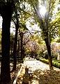 Parque Alcántara Romero.jpg