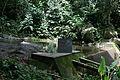 Parque Estadual da Pedra Branca - Pau da Fome 04.jpg