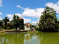 Parque Rodo Castillo - Montevideo - Uruguay (34470770523).jpg