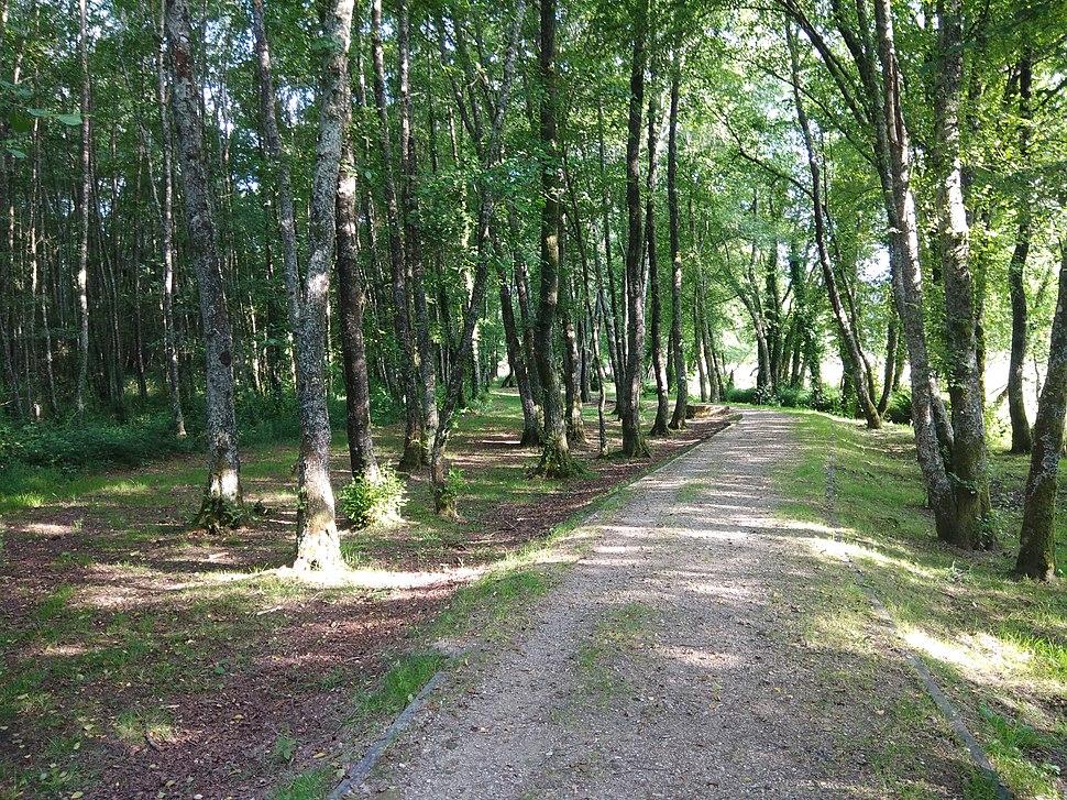 Paseo Fluvial do Carregal.