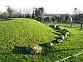 Passage tomb, Townleyhall, Co. Louth - geograph.org.uk - 1078235.jpg