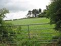 Pasture below Canon's Wood - geograph.org.uk - 1361213.jpg