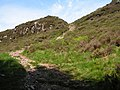 Path up Northwest Flank of Screel - geograph.org.uk - 1334450.jpg