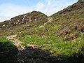 Path up Northwest Flank of Screel - geograph.org.uk - 1334450.jpg