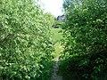 Paysage (Colmar) (6).jpg