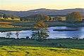 Paysage de la Réserve naturelle régionale de la haute vallée de la Vézère, la tourbière-étang de Chabannes, commune de Saint-Merd-les-Oussines, Correze, France, Europe.jpg