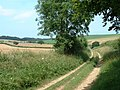 Peddars Way, Norfolk. - geograph.org.uk - 158452.jpg