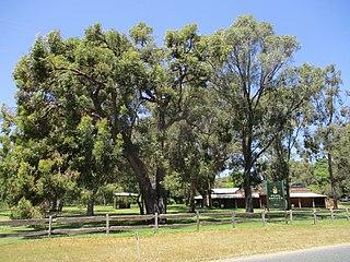 Karnup, Western Australia Suburb of Perth, Western Australia