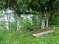 Permskiy r-n, Permskiy kray, Russia - panoramio (1195).jpg
