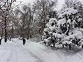 Petrovskyi Park, Poltava (12.01.19) 03.jpg