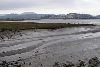 Richardson Bay - The outlet of Coyote Creek, which drains Tam Valley into upper Richardson's Bay
