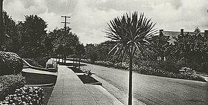 Piedmont Avenue (Berkeley) - Piedmont Avenue, 1915